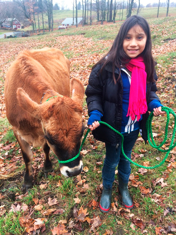 Farms for City Kids Vermont Dairy Farm